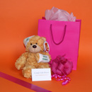 Get well soon gifts for women, teddy bear get well gifts for girls, small get well presents